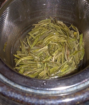 Infusing tea leaves.