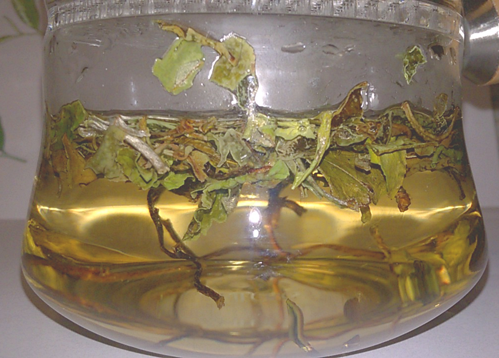White Peony from Rishi Infusing